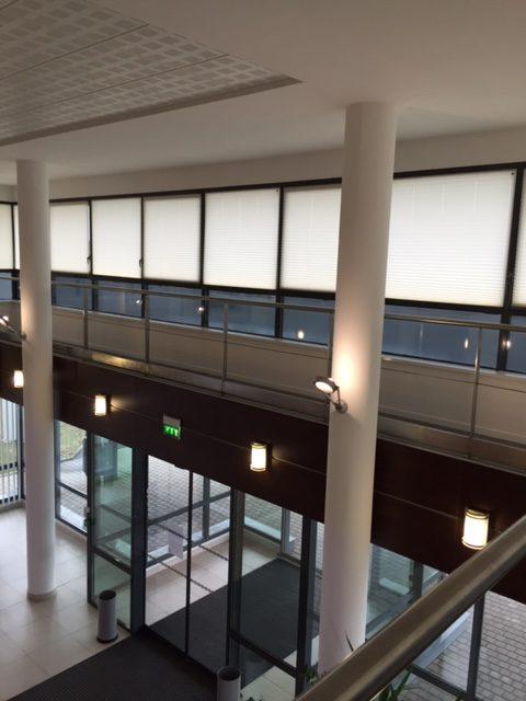 Vitres bureau fumées et teinte de protection solaire bâtiment à Saint-Georges-sur-Cher(41)